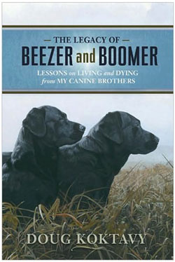 Beezer and Boomer, by Doug Koktavy