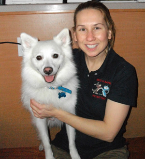 pet sitter interview with brenda janner beg n bark pet sitting in