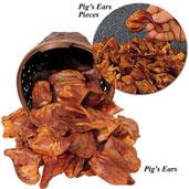 pig ear chews recall