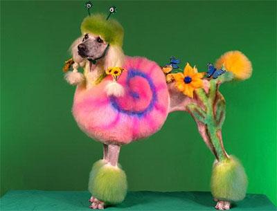 http://petsitusa.com/blog/wp-content/uploads/poodle-flowers.jpg