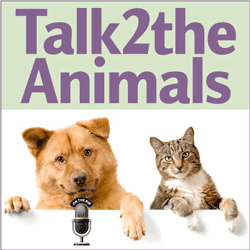 Janet Roper, animal communicator, is host of Talk2theAnimals radio show